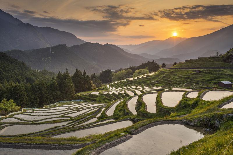 Maruyama Senmaida Rice Terraces