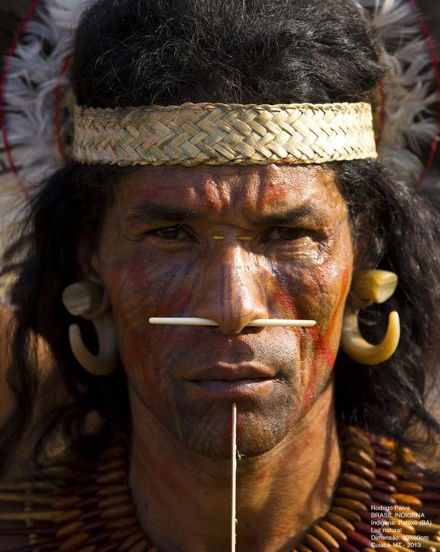 Brasil Indígena