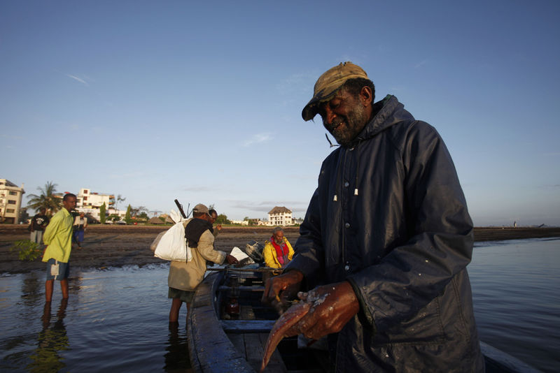 n this Wednesday, Nov. 25, 2009 picture A Kenyan fisherman prepare a small fish for bait before they start a day of fishing in Malindi.Fishermen who fish for a living and sportsmen who catch fish for fun say they've seen a rise in fish stocks in northern Kenya and suspect the rise is due to Somali pirates who have forced commercial trawlers off the Somali coast.