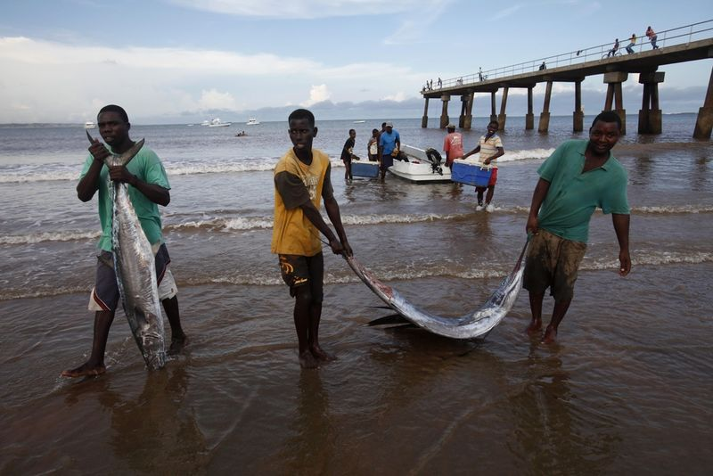 In this Tuesday, Nov. 24, 2009 picture Kenyan fishermen carry sailfish and barracuda caught by South African sports fishermen in Malindi.Fishermen who fish for a living and sportsmen who catch fish for fun say they've seen a rise in fish stocks in northern Kenya and suspect the rise is due to Somali pirates who have forced commercial trawlers off the Somali coast.(
