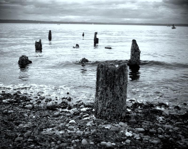 Pier Stumps