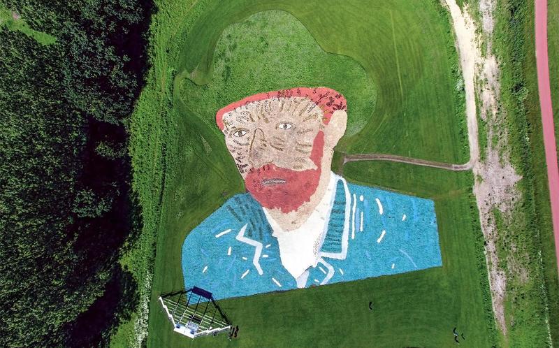 Vincent van Gogh painting, flower field