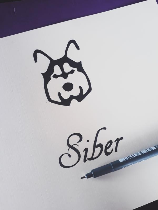 Logo Design for Fox Apparels