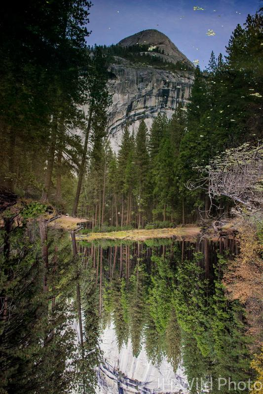 It's All In The Reflection, Yosemite Valley