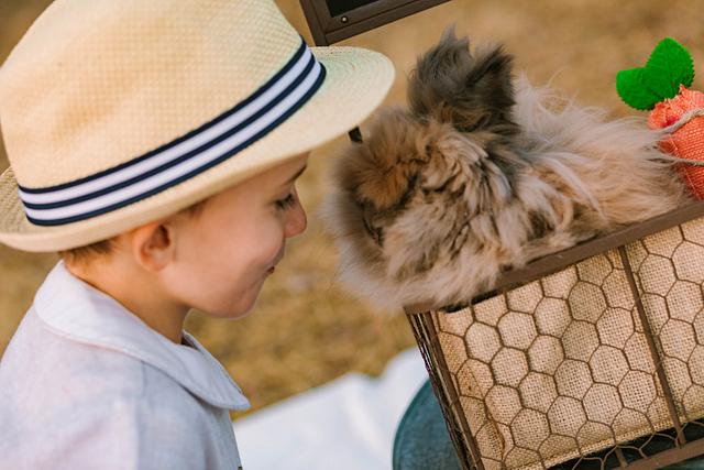 Easter Bunny Mini