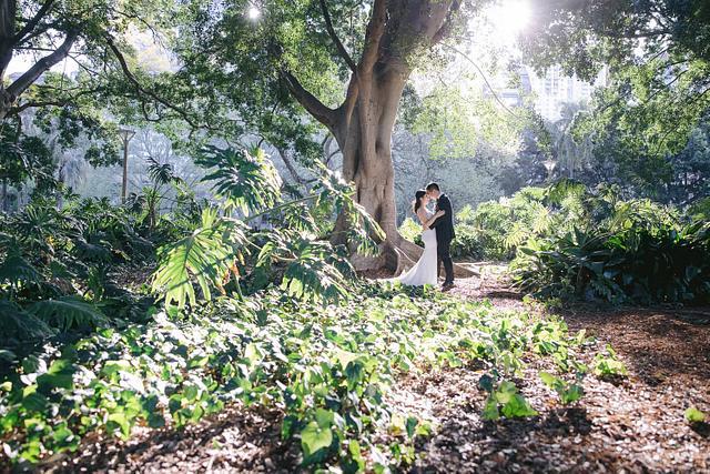 Luminous Wedding