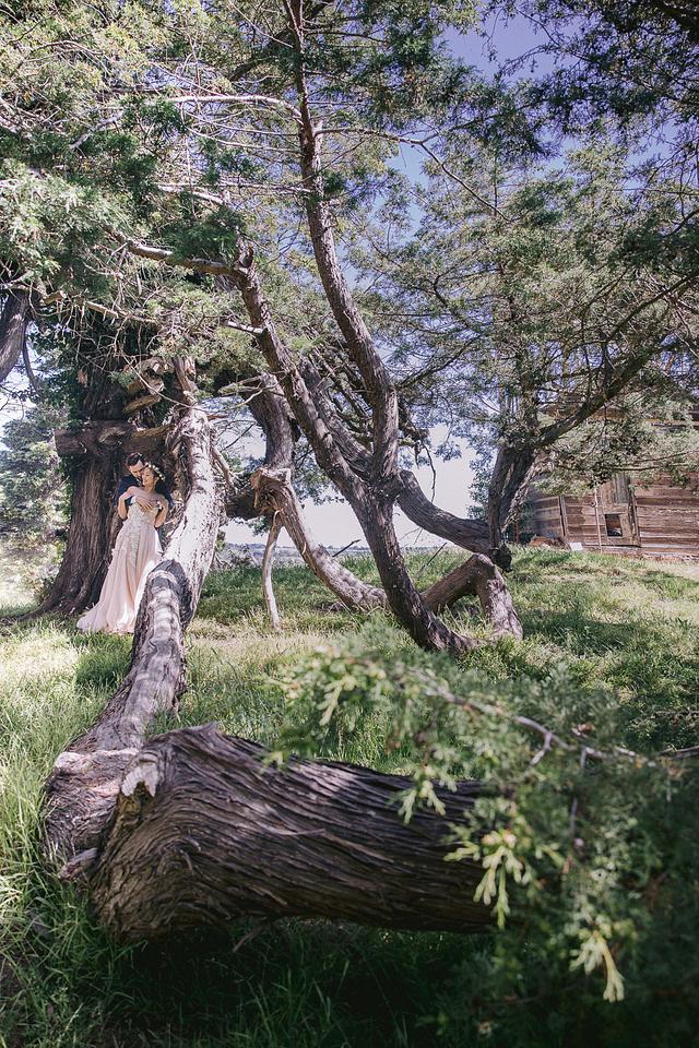 Katharina + James | Woodland Fairytale