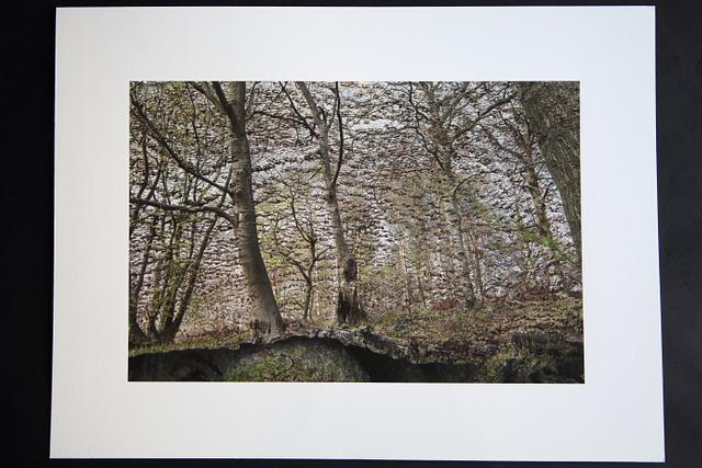 SP829043 (2017) - archival giclée print, 40.6cm x 30.5cm, edition of 3