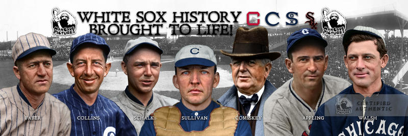 Our 2018 SoxFest Composite Banner
