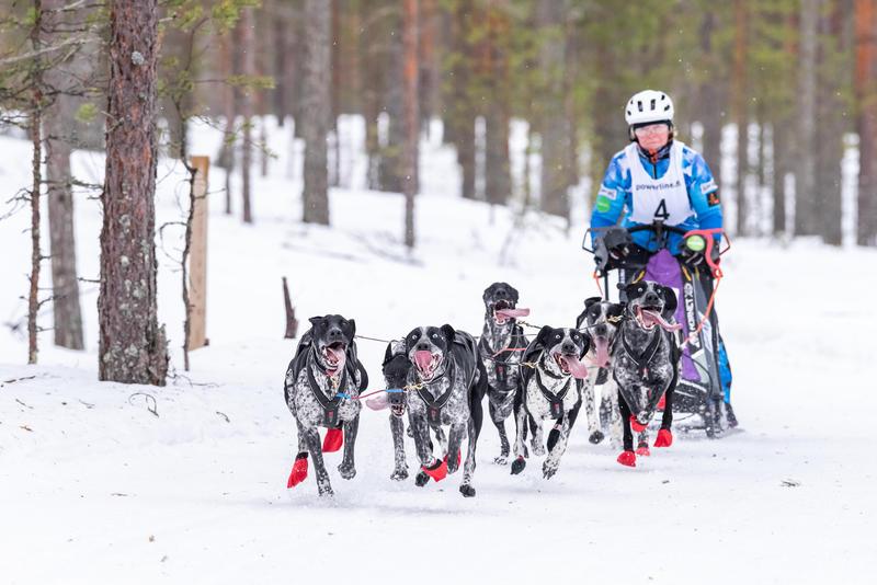 Valjakkourheilua eli Jämin Talvikisa 2019