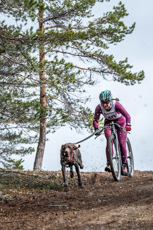 Valjakkourheilu: Jämin kevätkisa 2019