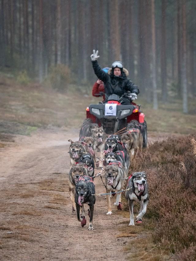 Valjakkourheilu: Jämi MD 2019
