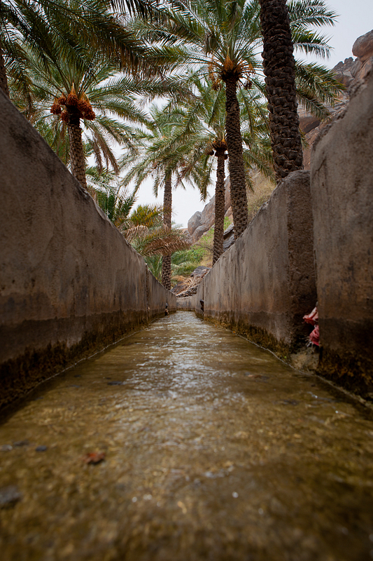 Falaj (aqueduct) in Misfat al-Abriyeen. Falaj are essential for life in Oman's harsh desert climate.