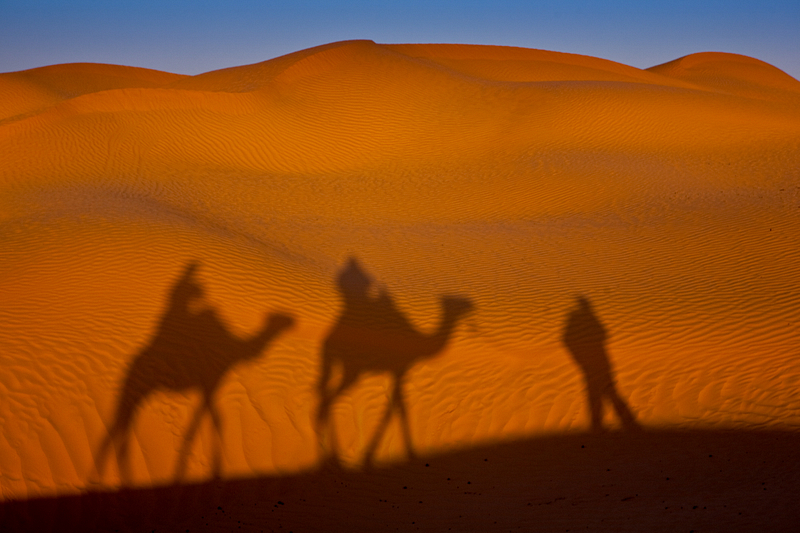 Saharan camel ride. Sunset. Ksar Ghilane.