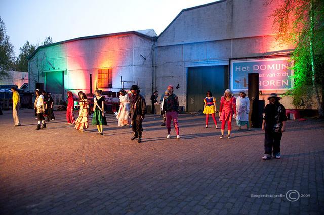 Het Domijn 2009  toneel voorstelling Vechtstede college
