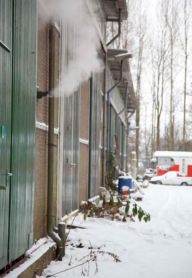 Het domijn 2009 winter december