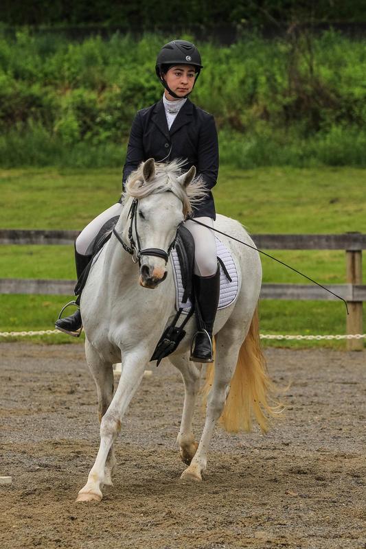 BREA Spring Horse Trial 2019