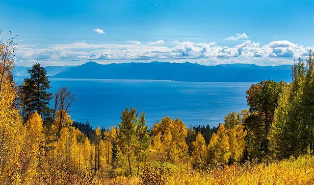 Lake Tahoe Fall Photography Workshop 10/13