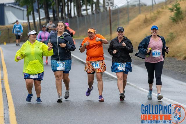 Galloping Gertie 2019