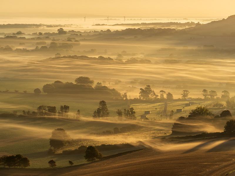 Sussex weald in mist