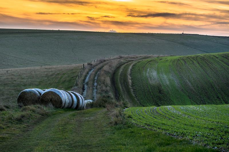 Curvaceous South Downs