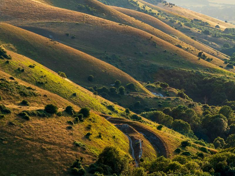 Ecarpment July