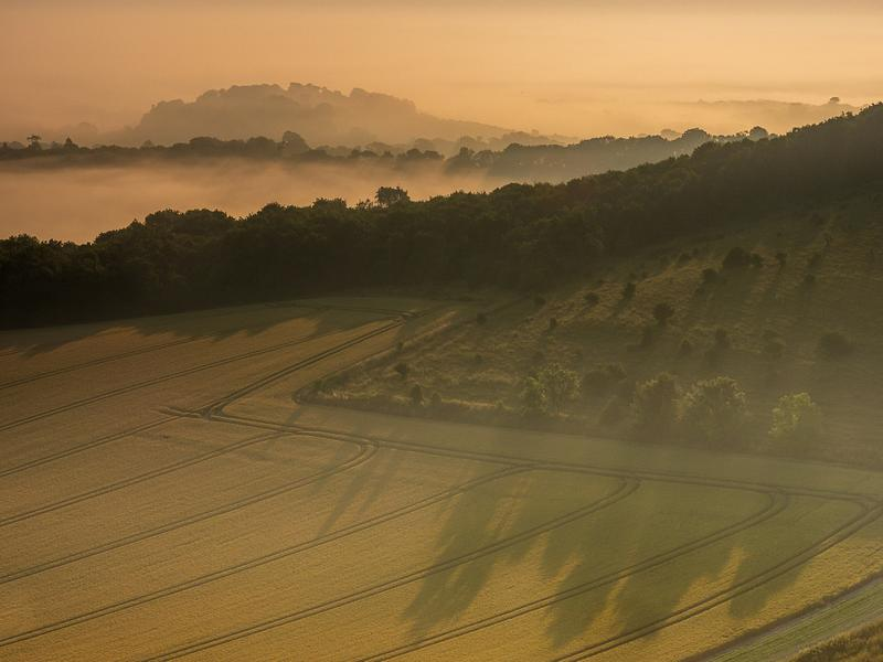 Morning mist & shadow on the South Downs