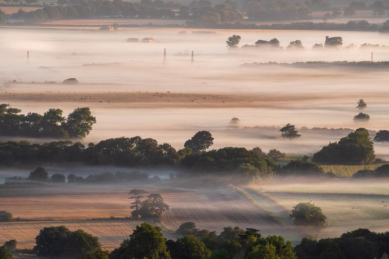 Summer mist in Sussex