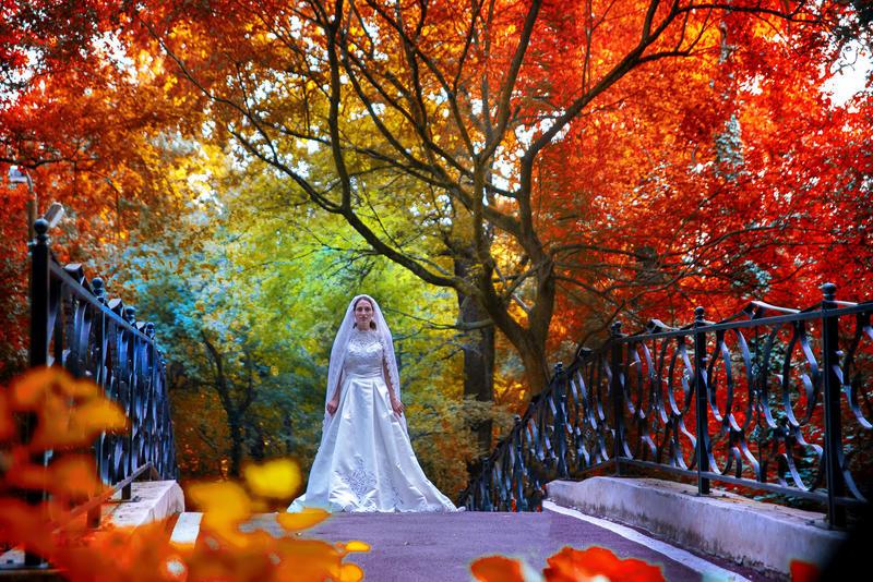 Poze nunta Timisoara