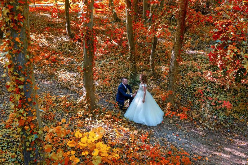 Fotografie profesionala de nunta in Timisoara.