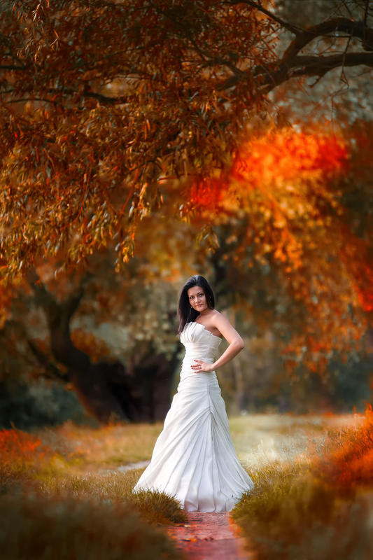 Timisoara, fotografie profesionala nunta.