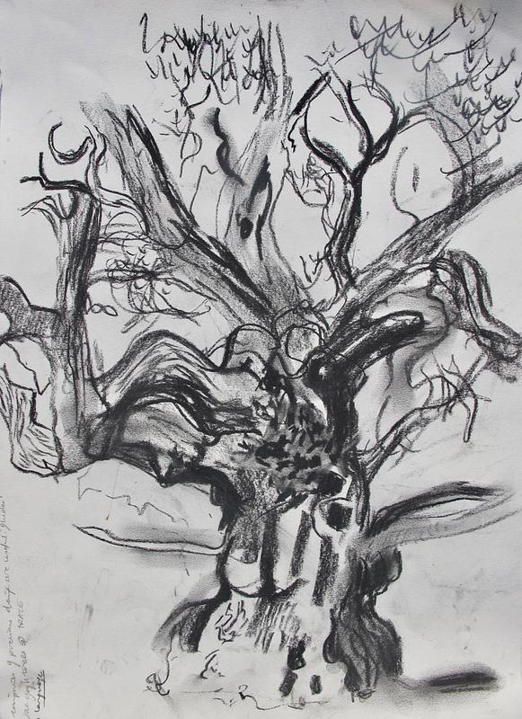 Winter Tree Portrait 3
