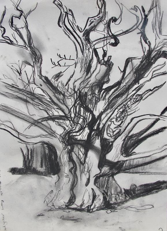 Winter Tree Portrait 2 (light)