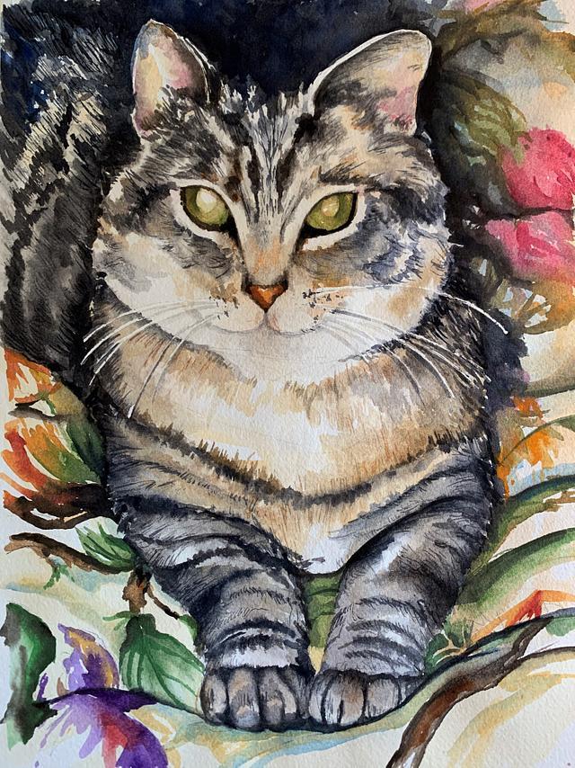 Tiger Kitty
