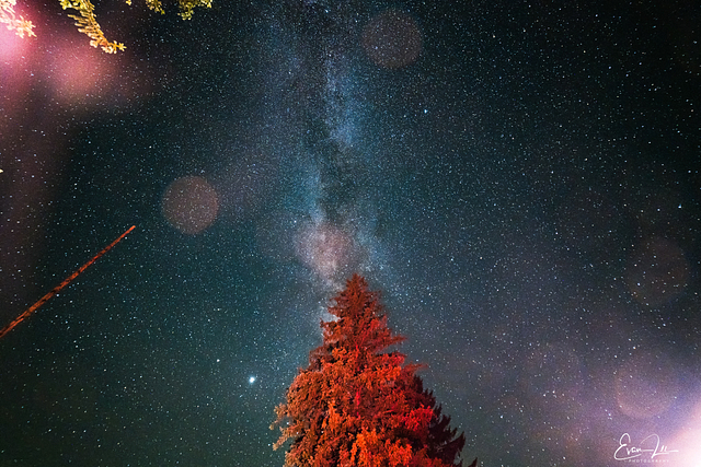 Cherry Springs Astrophotography 2020