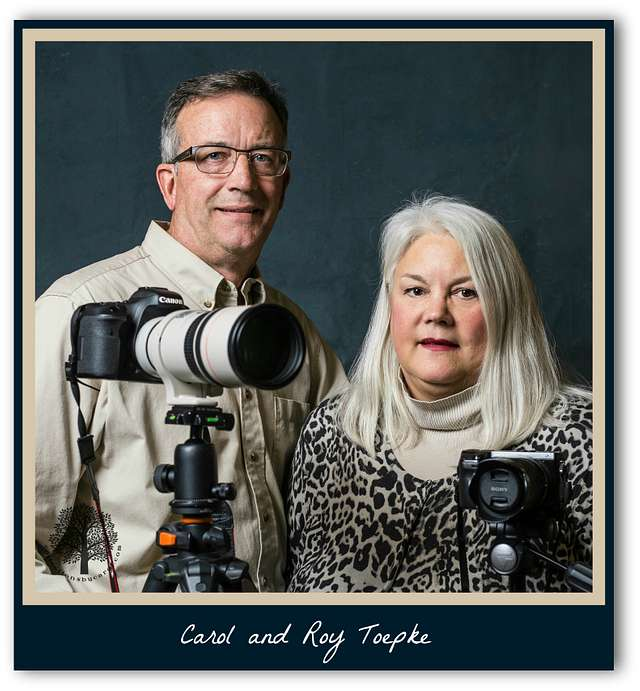 Artist's Statement for Collections by Carol Photographers Carol and Roy Toepke