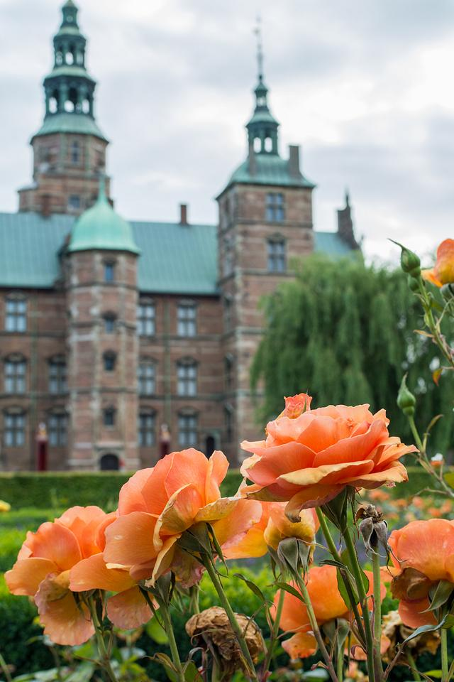 Flowers and the castle
