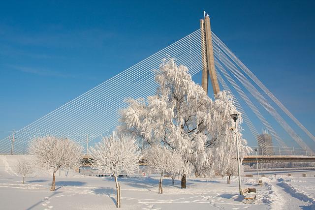 Snowy winter with bridge