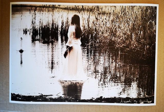 Swan lake 12x8