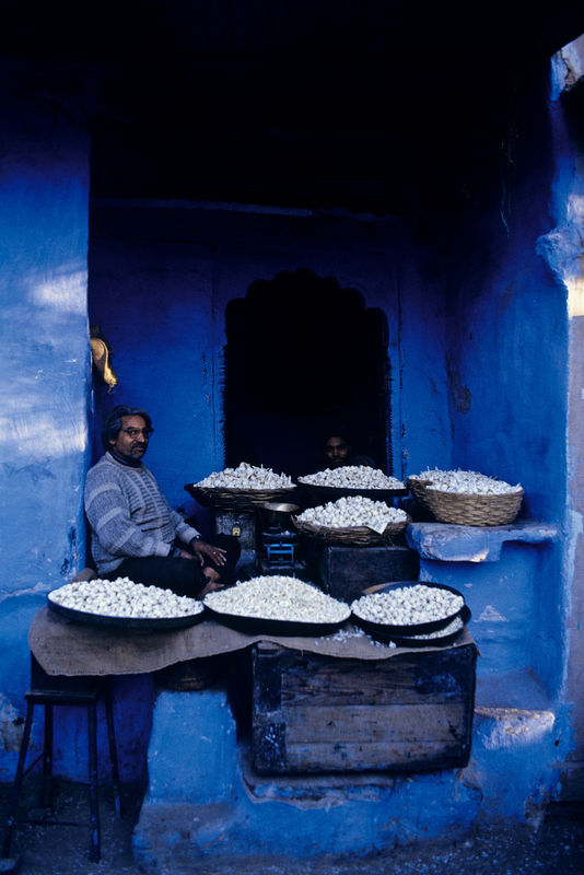 Nagaur, Rajasthan