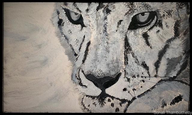 Paints & Colours