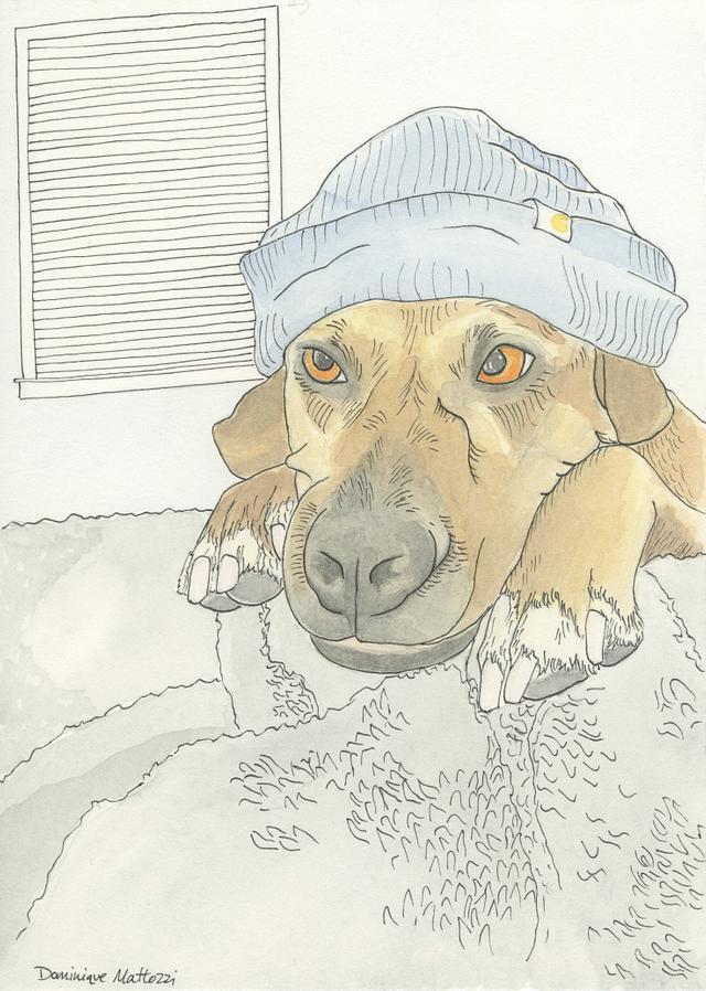 "Custom Watercolor Pet Portrait, 5""x7"""