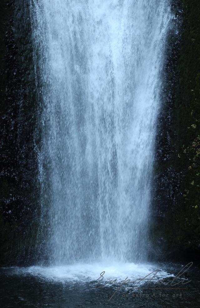 Oregon, Portland
