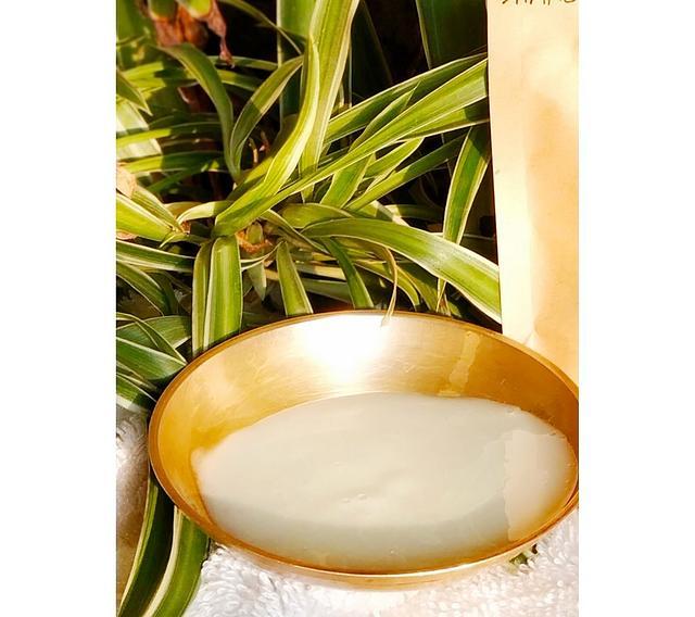 Holistic Beauty Milk