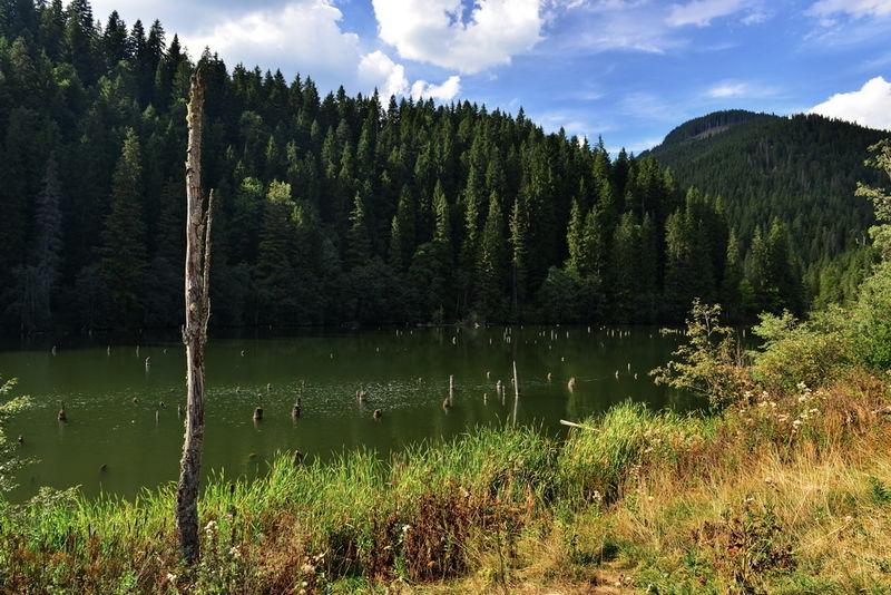 Lacul Rosu 0003
