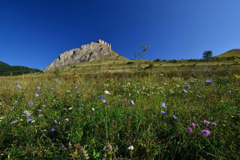 Cetatea Trascaului (Cetatea Coltesti) 0001