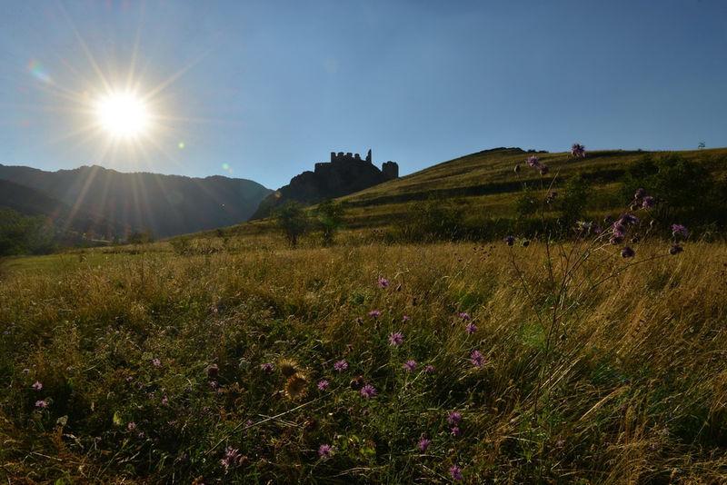 Cetatea Trascaului (Cetatea Coltesti) 0014