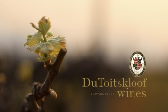 Du Toits Kloof Wines