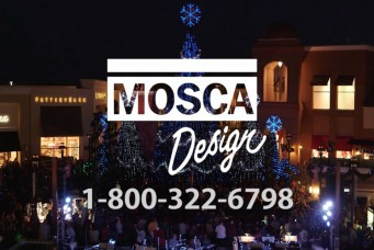 Mosca Design - Wiregrass Symphony in Lights