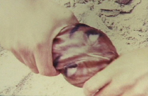Unruhe (Video 2001)